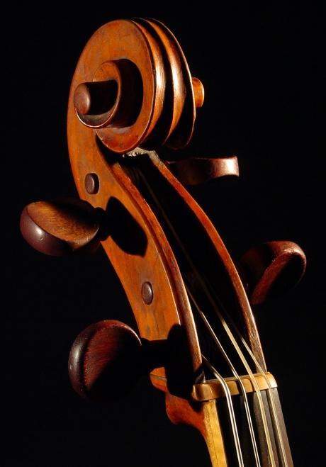 violoncello_NItaly1760-hdhalf3